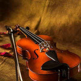 Life Partner by Rakesh Syal - Artistic Objects Musical Instruments