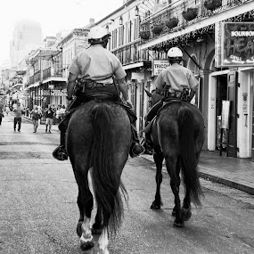 by Alice Gipson - City,  Street & Park  Street Scenes ( mounted police, new orleans, police, horses, alicegipsonphotographs, mounted police in new orleans )