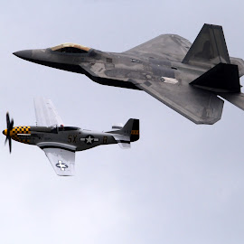 P51 Mustang and F22 Raptor by Bruce Arnold - Transportation Airplanes
