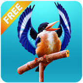 Real Talking Bird APK for iPhone