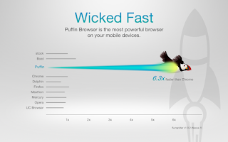 Screenshot of Puffin Browser - Fast & Flash