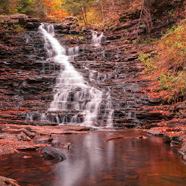 by Gene Walls - Landscapes Forests ( orange, f l ricketts, spillway, kitchen creek, waterfall, forest, yellow, leaves, ricketts glen, wilderness, red, nature, autumn, foliage, f l ricketts falls )