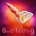 App Good Morning Everybody APK for Kindle