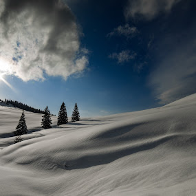 Prislop by Sorin Tanase - Landscapes Mountains & Hills ( mountains, winter, prislop, snow, romania, sun )