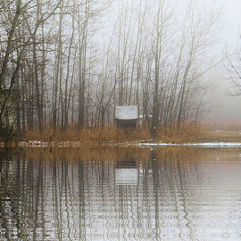 Misty Morning by Leslie Collins - Digital Art Places ( water, digital art, reflections, trees, place, mist )