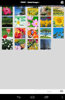Screenshot of Canon PRINT Inkjet/SELPHY