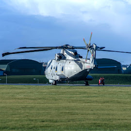 prepare for takeoff by Nigel Clackworthy - Transportation Helicopters ( helicopter, sea king, grass, navy, vavigation )