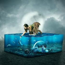 The lost Aquarium by Sergiu Pescarus - Digital Art People ( dolphin, fantasy, coral, aquatic, underwater, digital manipulation, aquarium, coral tree )