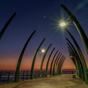 Durban (180 of 515)_DxO.jpg