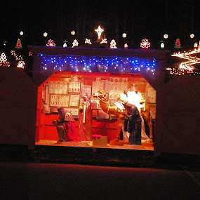 Creche at lasalette shrine by Stephen Deckk - Public Holidays Christmas