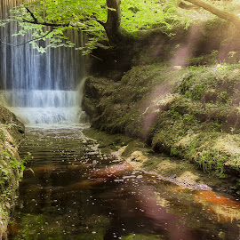 secret waterfall by Graeme Lawson - Landscapes Waterscapes ( peaceful, tree, waterfall, forest, leaves, sunlight, sun rays, river )