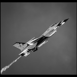 Thunderbirds by Dave Lipchen - Black & White Objects & Still Life ( thunderbirds )