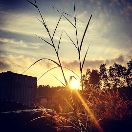 Good Morning by Antonius Oey - Instagram & Mobile Android ( sunrise, shilouette, sunnyday, landscape, androidography, mi4 )