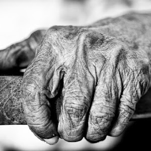 aged hand 1x.jpg