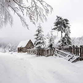 Little house by Marius Turc - Landscapes Travel ( winter, snow, trees, romania, house )