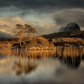 Assent Golden Hour by Charlie Davidson - Landscapes Sunsets & Sunrises ( scotland, reflection, mountains, sunset, trees, landscape photography, lake, landscape, golden hour )