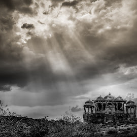 Surreal  by Pradyumna Verma - Landscapes Travel ( ranthambore, black and white, travel, surreal, landscape )