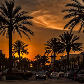 Sunset at John's Pass by Pat Lasley - City,  Street & Park  Street Scenes ( tourist trap, sunset, street, john's pass, palm trees, the strip )