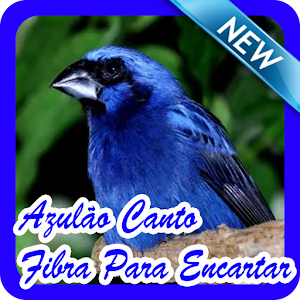 Download Azulão Canto Fibra Para Encartar Novo Offline For PC Windows and Mac