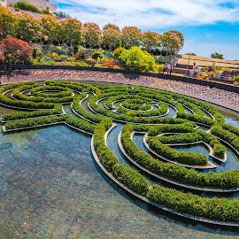 Oasis at the Getty by Andrew P - Buildings & Architecture Other Exteriors ( getty center, getty, fountain, landscaping, garden, oasis, getty museum )
