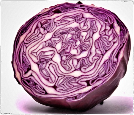 Pickled red cabbage (Rødkål)