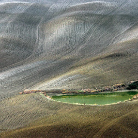 Green lake by Izidor Gasperlin - Landscapes Prairies, Meadows & Fields