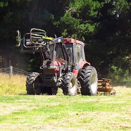 International by Russell Benington - Transportation Other ( farm, hay, international, tedding, nz, tractor,  )