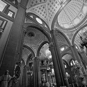 Puebla by Cristobal Garciaferro Rubio - Buildings & Architecture Places of Worship ( interior, building, church, black and white, mexico, puebla, dome, cathedral, monotone )