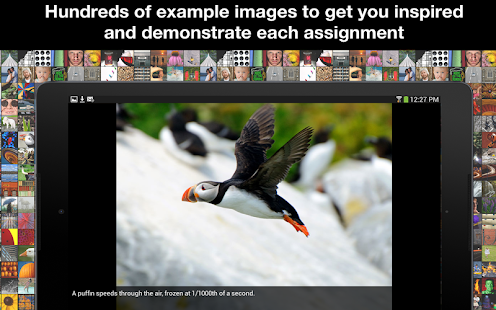 Learn Photo365- screenshot thumbnail