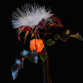 by Eugenija Seinauskiene - Artistic Objects Still Life