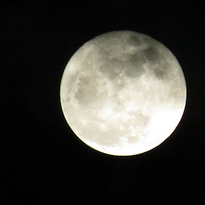 11-14-2016 Super Moon.jpg