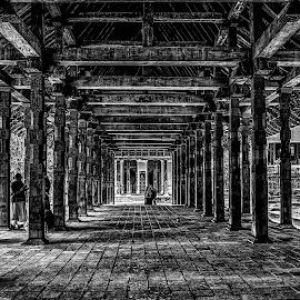 Patterns by Buddhika Jayawaredana - Buildings & Architecture Architectural Detail ( blackandwhite, detail, hdr, black and white, black and white hdr, buddhikajayawardanaphotography, architecture, sri lanka )