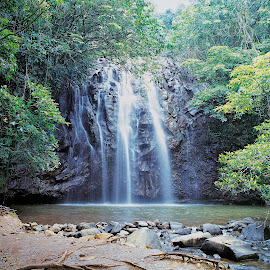 Gilles Fall by Annette Flottwell - Landscapes Waterscapes ( manual, film, gilles highway, queensland, qld, atherton tablelands, waterfall, 6x6 )
