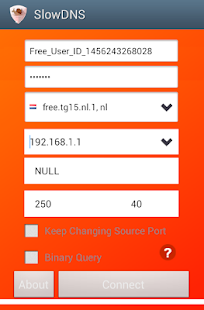 Free Download VPN Over DNS Tunnel : SlowDNS APK for Samsung