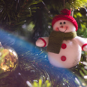 Sunny Christmas by Stephanie Walsh - Public Holidays Christmas ( christmas bauble, christmas, snowman, christmas tree, light flare, colombian christmas, sunny christmas )