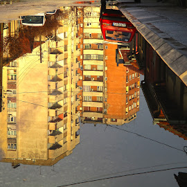by Vukosava Radenovic - City,  Street & Park  Street Scenes (  )