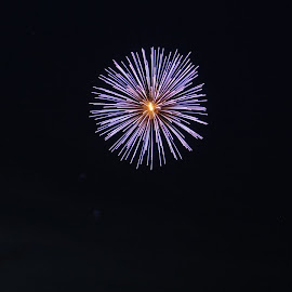 Bombs Bursting  by Lacey Fiorelli  - Public Holidays July 4th ( holiday, colors, 4th of july, fireworks, night )