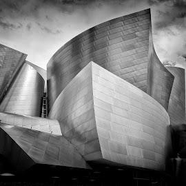 Disney Hall by Alessandro Calzolaro - Buildings & Architecture Public & Historical ( building, hall, california, losangeles, architecture, disney )