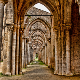 SAN GALGANO ABBEY (Tuscany, Italy) by Gianluca Presto - Buildings & Architecture Architectural Detail ( nobody, old, gothic, tuscany, architechture, toscana, church, arch, architectural detail, architecture, historic, story, ancient, italia, legend, arches, architectural, perspective, stones, medieval, italy, abandoned, abbey,  )