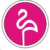 App Flamingo Radio APK for Windows Phone