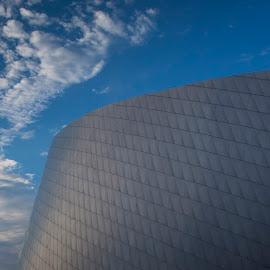 Den Blå Planet by Ole Steffensen - Buildings & Architecture Architectural Detail ( copenhagen, den blå planet, the blue planet, aquarium, denmark, architecture )