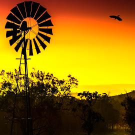 by Rob Crutcher  - Novices Only Landscapes ( nature, sunset, australia, landscape, windmill )
