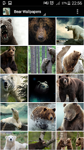 Bear Wallpapers - screenshot