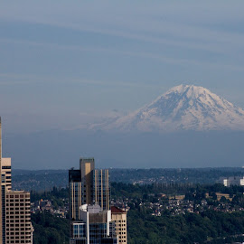 from the space needle by William Stansbury - City,  Street & Park  Skylines