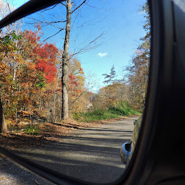 Mirrored Image by Melissa Davis - Artistic Objects Other Objects ( mirror, reflection, autumn, fall, car mirror )