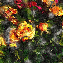 Ageless Beauty by Nancy Bowen - Digital Art Things ( grunge, red, roses, yellow )