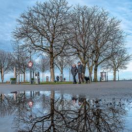 Park Reflection! by Jesus Giraldo - City,  Street & Park  City Parks ( water, reflection, park, blue, sunny, trees, beauty, spring, walk, people )