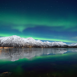 Aurora over Forfjord by Marius Birkeland - Landscapes Starscapes ( nature, aurora, sea )