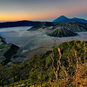 Bromo I love U by Hirza Kini - Landscapes Mountains & Hills ( indonesia, probolinggo, bromo )