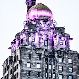 by Lisa Frisby - Buildings & Architecture Architectural Detail ( architect, building, skyscraper, purple, city life, chicago, city )